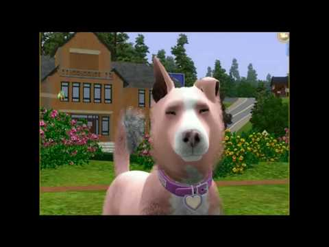 A Teenaged Love Episode 4 (Sims 3 Pets Story)