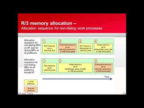 SAP Memory Management