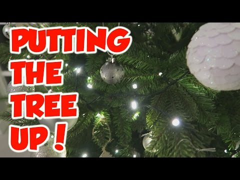 12 Days Of Liftmas: Day 2: Putting The Tree Up!
