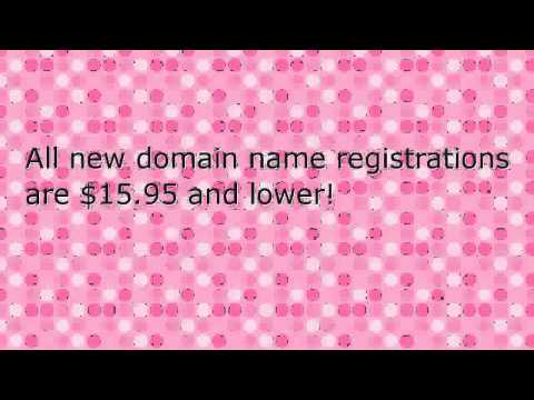Check Domain Name Registration