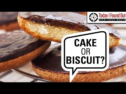A Cake or a Biscuit? - The Lengthy and Expensive Saga of the Jaffa Cake