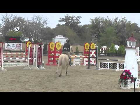 Steal the Sunshine: Level 1 Jumpers at HITS Ocala