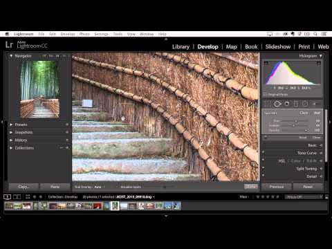 Lightroom CC - Removing Dust Spots and Imperfections