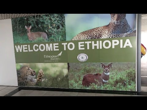 Ethiopian Airlines Layover - Addis Ababa Bole International Airport, Ethiopia