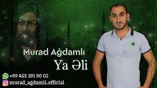 Murad Ağdamlı ft İlqar Nehrəmli ft Kərbəlayi Tərlan - Ya Əli / Audio