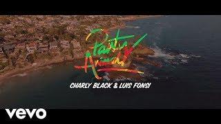 Charly Black, Luis Fonsi - Party Animal