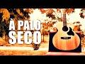 A Palo Seco Belchior Cover Gustavo Seixas