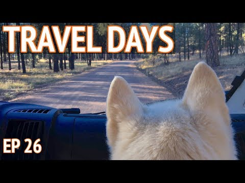 What Travel Days Are Like in a Van   EP 26 Camper Van Life
