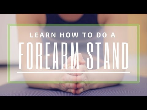 Forearm Stands for Beginners   With LJ