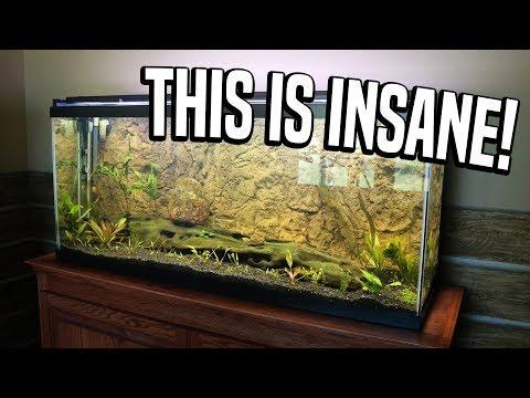 Aquarium 3D Background!!!!