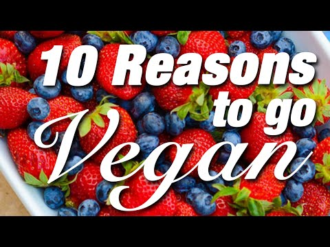 Top 10 Reasons To Go Vegan (SHARE THIS)