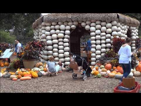 Dallas, Texas -  The Arboretum & Botanical Gardens, October 12, 2013