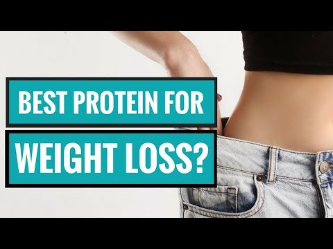 What Is the Best Type of Protein for Weight Loss?