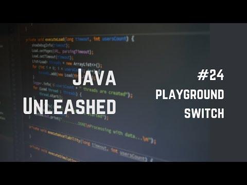 #24 Java Switch Statement Example