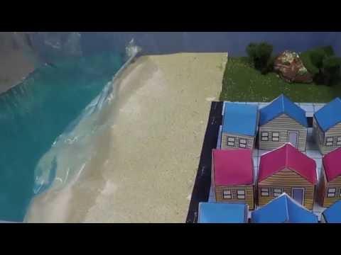 Natural Disaster Project: Tsunami 602
