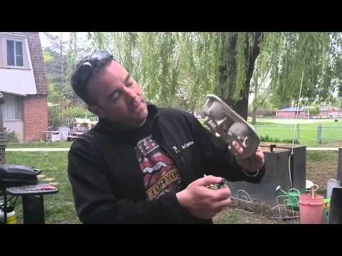Tim Horton's Coffee Tray  Bug Repellant