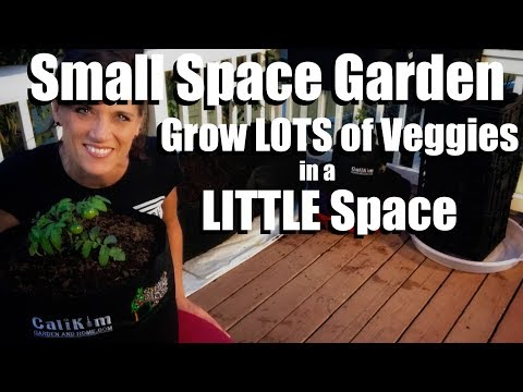 Planning a Small Space Garden, Containers, Soil, Veggies//Small Space Garden Series #1