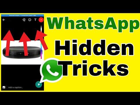 WhatsApp Hidden Features || How to change brush size in WhatsApp || Change font style in WhatsApp