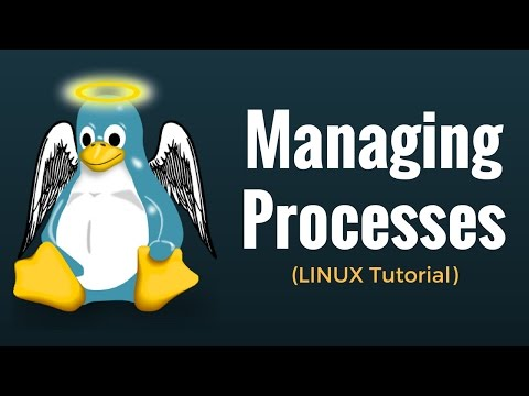 Managing Processes - Linux Tutorial 13