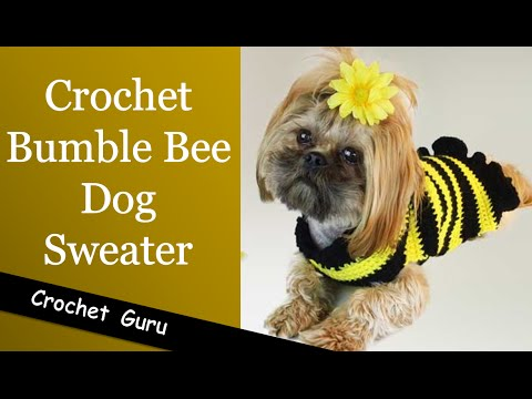 Crochet Dog Sweater - Easy Pattern for Beginners