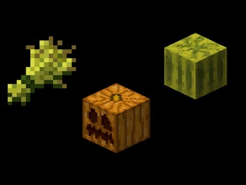 How to grow Wheat, Pumpkins, and Melons from seeds in Minecraft-Commentary