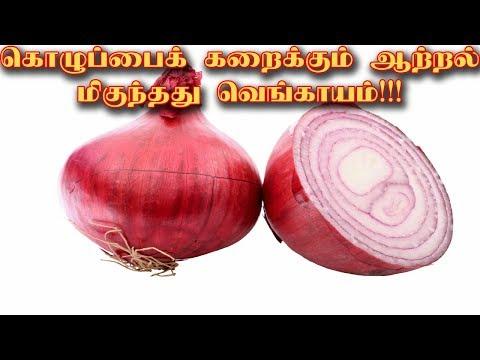 Onion will help to burn cholesterol |Tamil News|