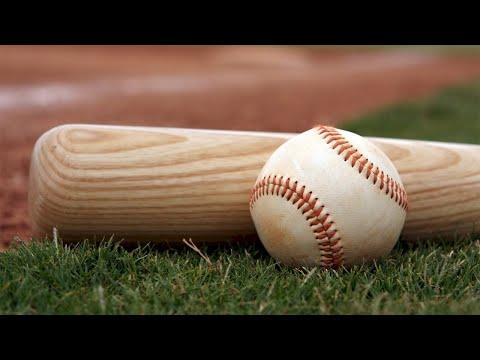 Baseballs minor leagues cancel 2020 seasons