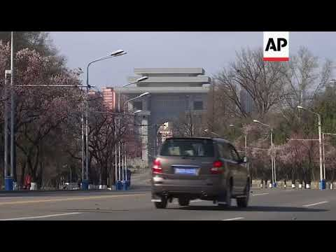 Springtime in Pyongyang with flowering blossom trees