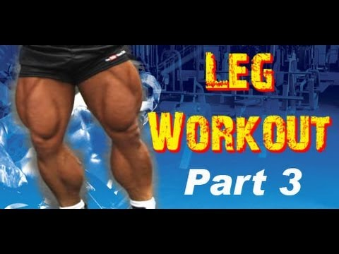 Complete LEG Workout Routine at the GYM