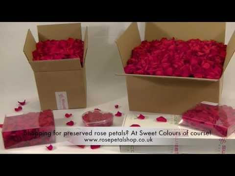 Red preserved rose petals