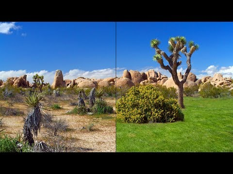 Photoshop Tutorial:How to Make Burnt-out|Brown GRASS into a Lush Green using Cs6