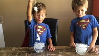 Ice Fishing - Indoor Activity for Kids - Simple Kitchen Science