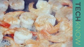 Unsafe shrimp and the question of seafood farming | TechKnow