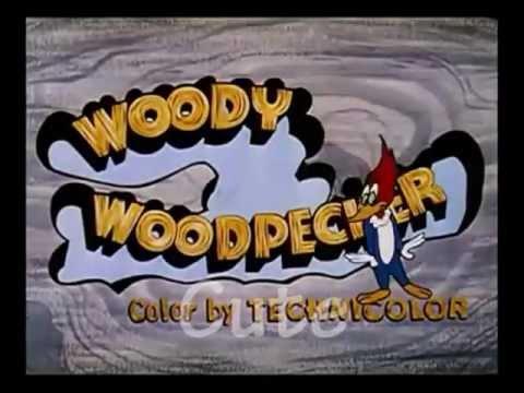 Stucco Repair - Woodpecker Damage