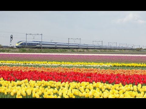 Eurostar announces Amsterdam service to start in April