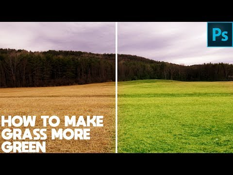 Photoshop Tutorial - How To Make Grass More Green In Photoshop