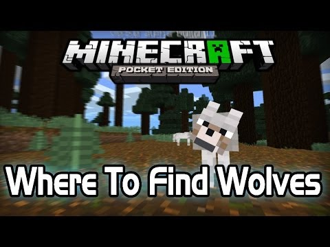 [0.9.0] Where To Find Wolves - Minecraft PE [Pocket Edition]