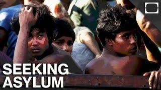 What Is Asylum And How Does It Work?