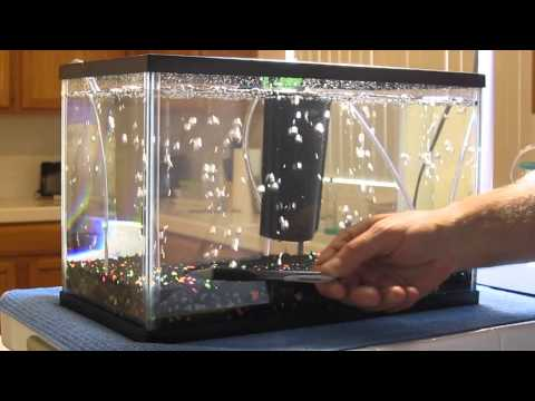 Air Stone vs Air Injection Technology for Aquariums. Enhanced Oxygen Diffusion
