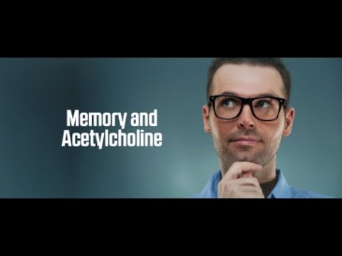 Memory and Acetylcholine