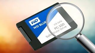 1TB SSD mi olur? WD Blue SSD ile olur!