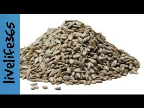 Why Eat Sunflower Seeds?