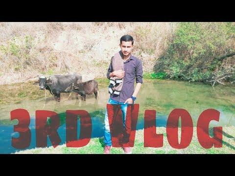 Simple Village Life | Vlog | Zain Ul Abadin