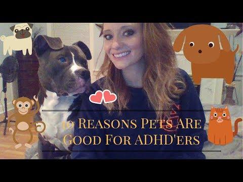 10 reasons pets help ADHDers!!