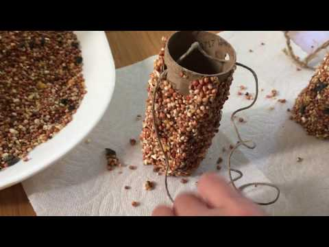 DIY TP Tube Bird Feeder