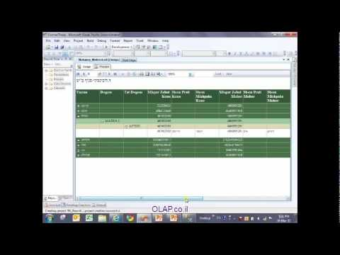 SSRS 2008 R2 Build Simple Report - Hebrew