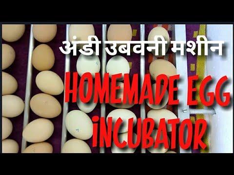 Home Made Egg Incubator in Hindi घर पे हि बनाईगा अंडसे चुजा निकालने वाला मशीन