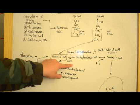 Proprionic Acidemia - Simplified Explanations for USMLE Step 1