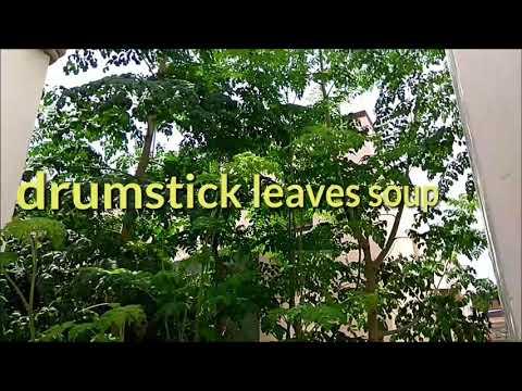 Drumstick leaves soup recipe/murungai keerai soup recipe
