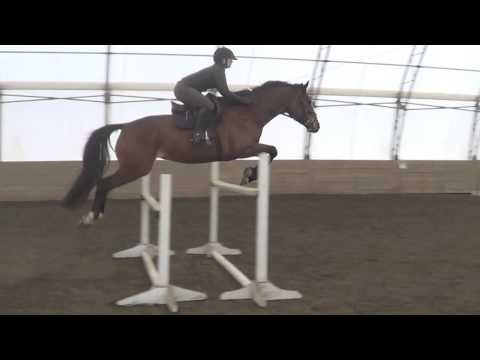 Building Confidence Jumping
